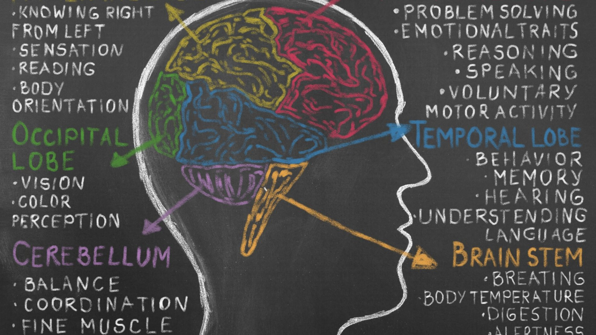 The Faster Your Brain Moves The More Time Off You Need