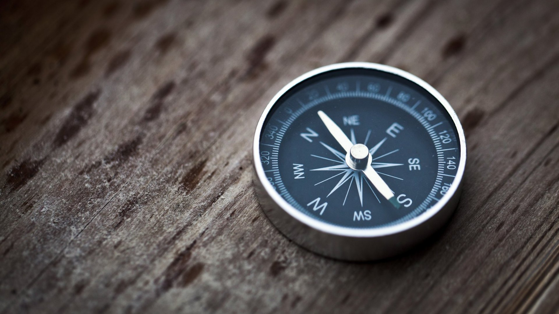 How Leaders of FastGrowing Companies Drive Success Through Delegation