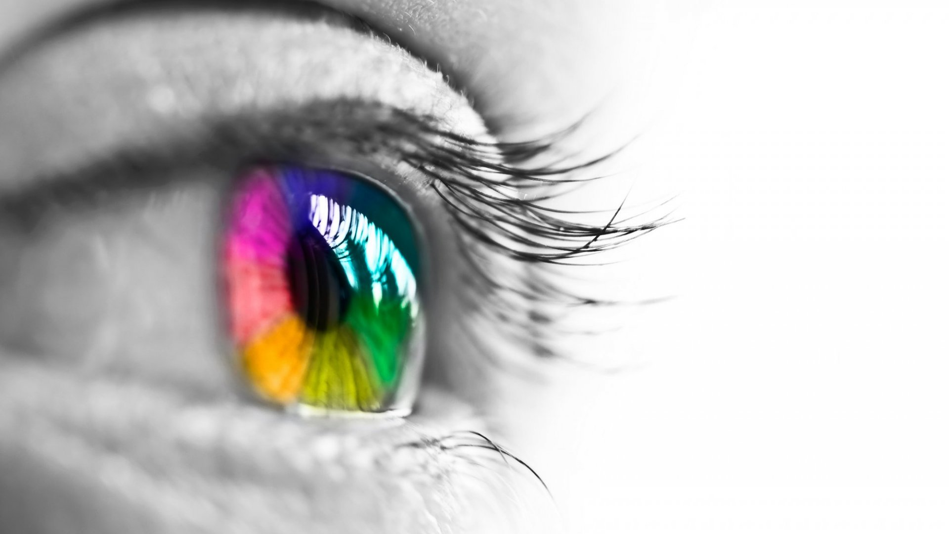 Research Shows Color Is Critical in Consumer Purchasing Decisions