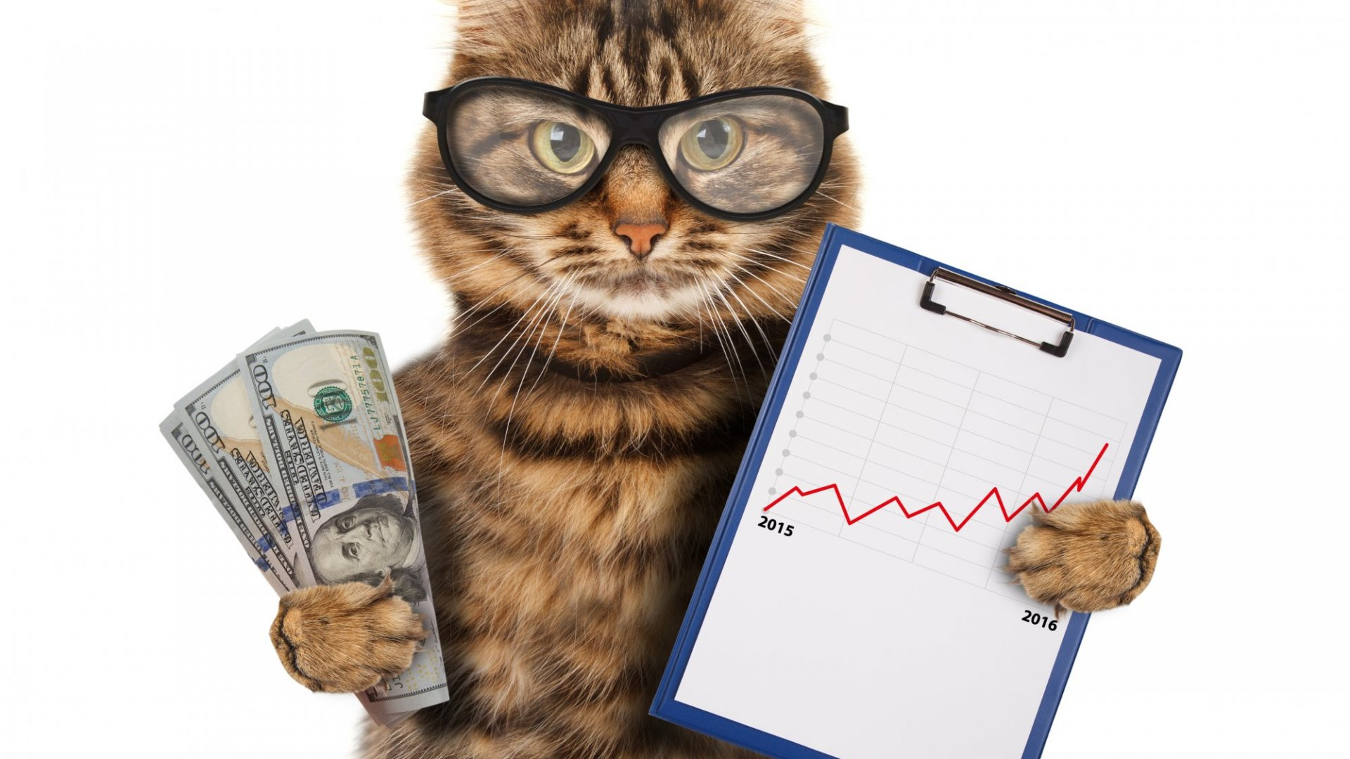 The Return of Animal Spirits and Recruiting New Employees