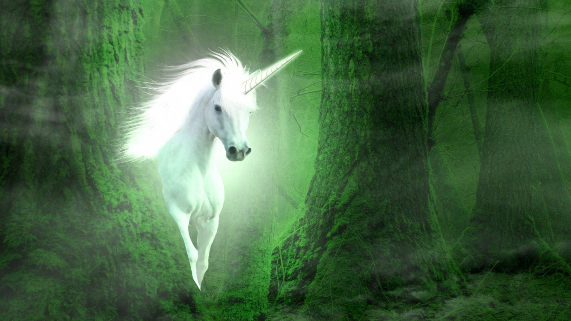 5 Things All Unicorn Marketers Have in Common