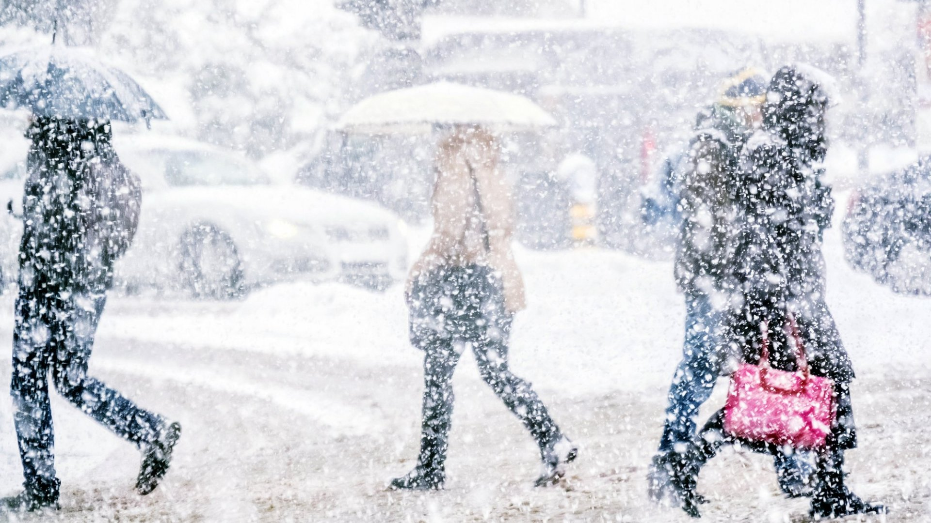 How Should Companies Handle Snow Days?