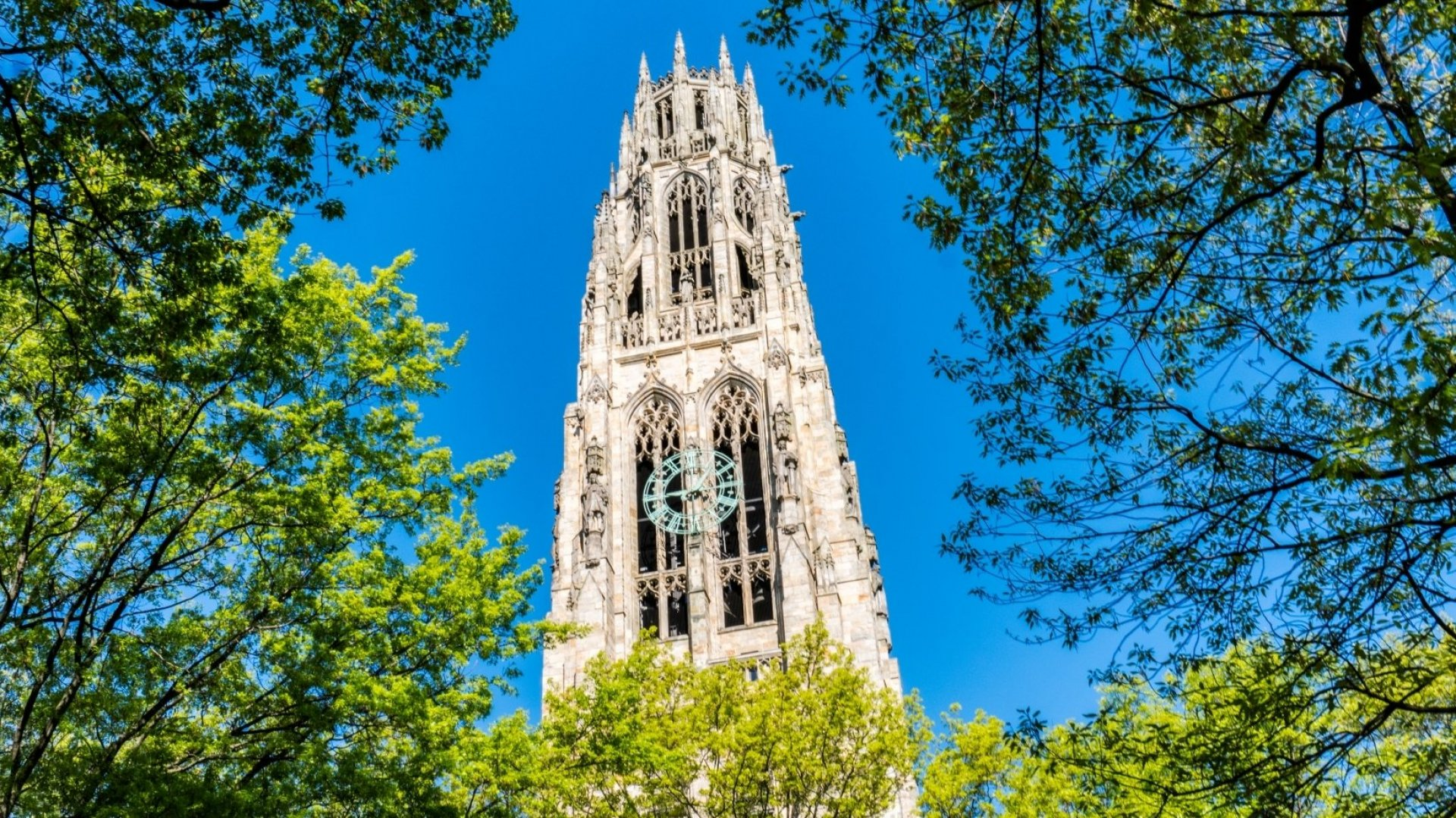 Yale Is Letting Anyone Take Its Most Popular Class Ever for Free