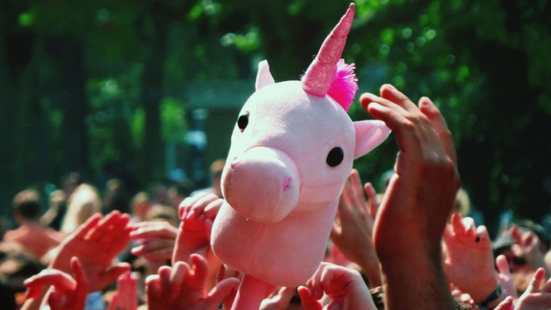 4 Questions You Need to Ask Before Hunting Talent Unicorns
