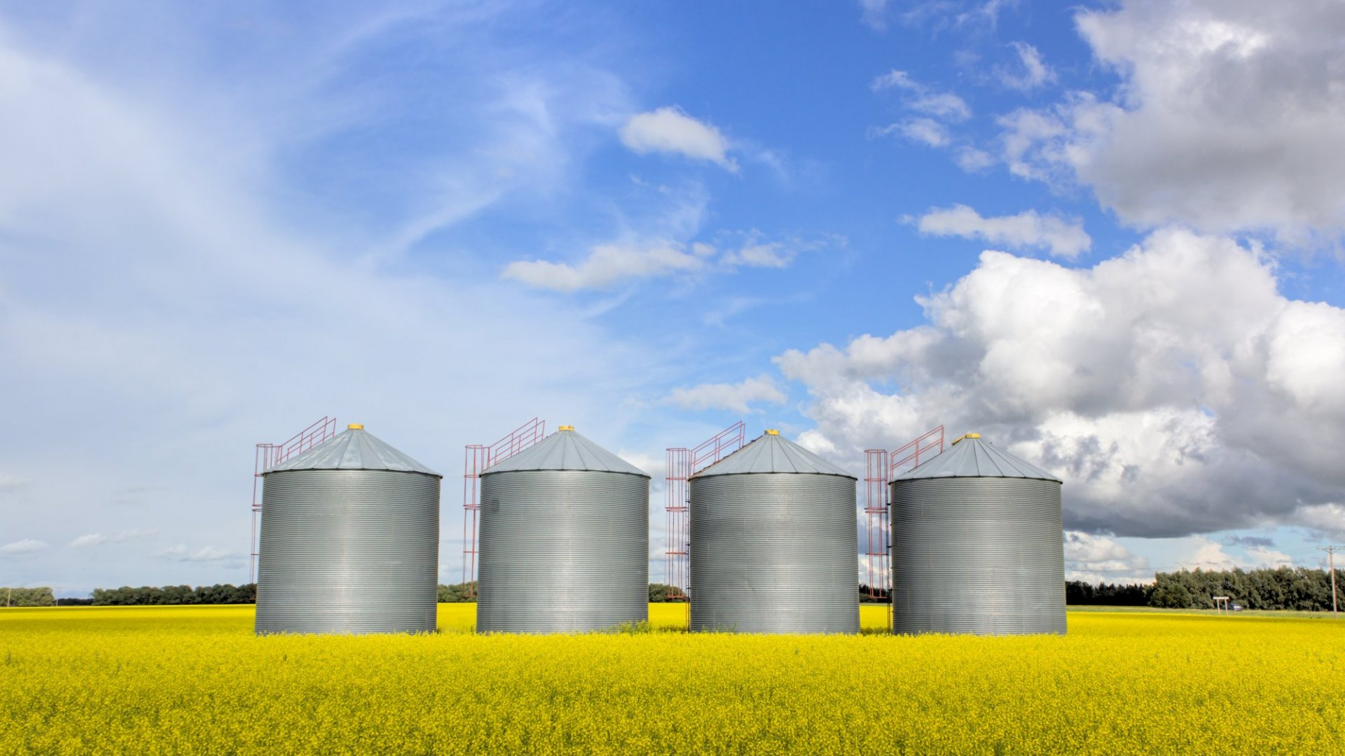 Breaking Down Silos Is a Myth, Do This Instead