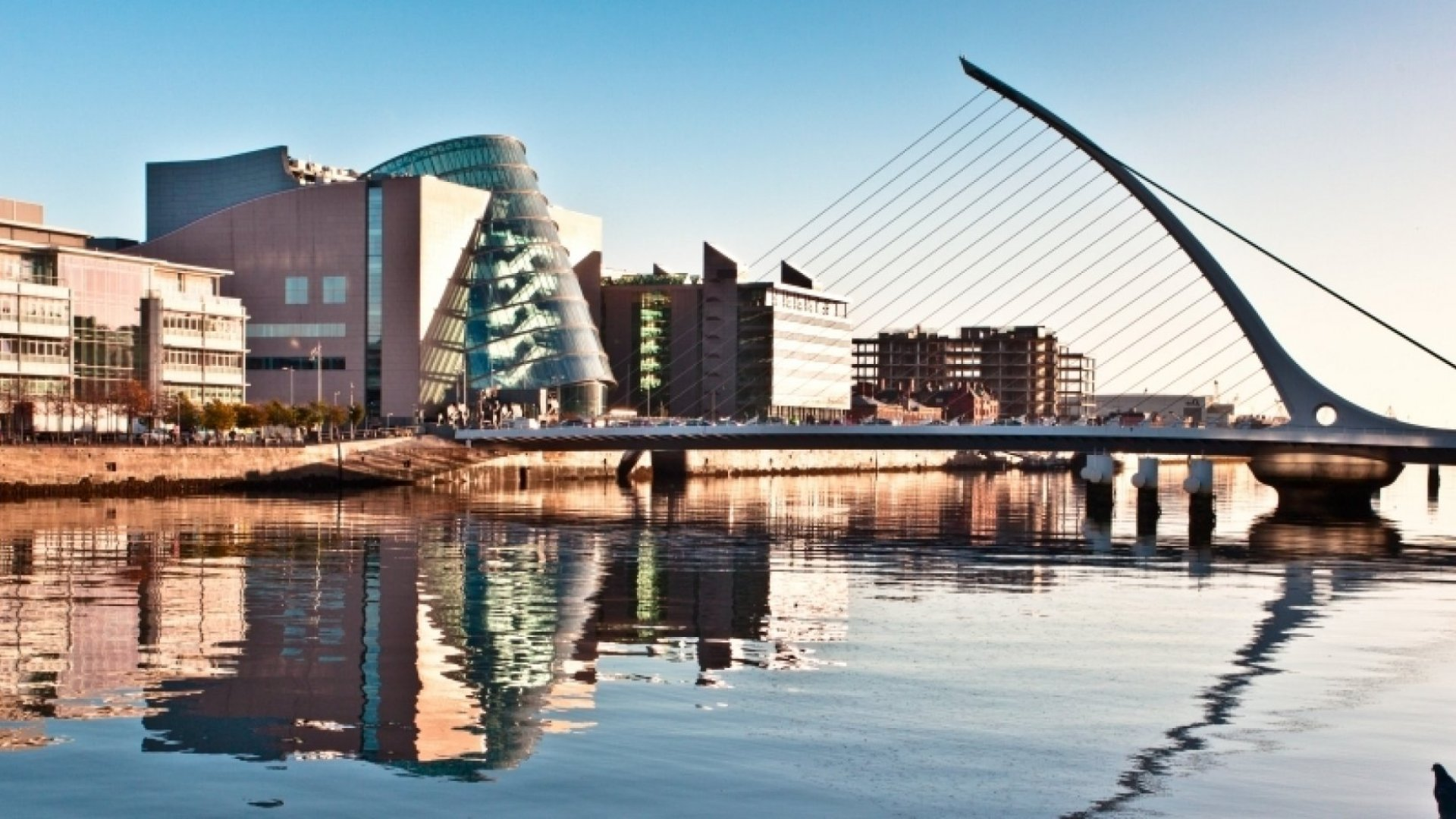 Lessons On Adding Value To The Tech Ecosystem From Dublin's First Commissioner For Startups