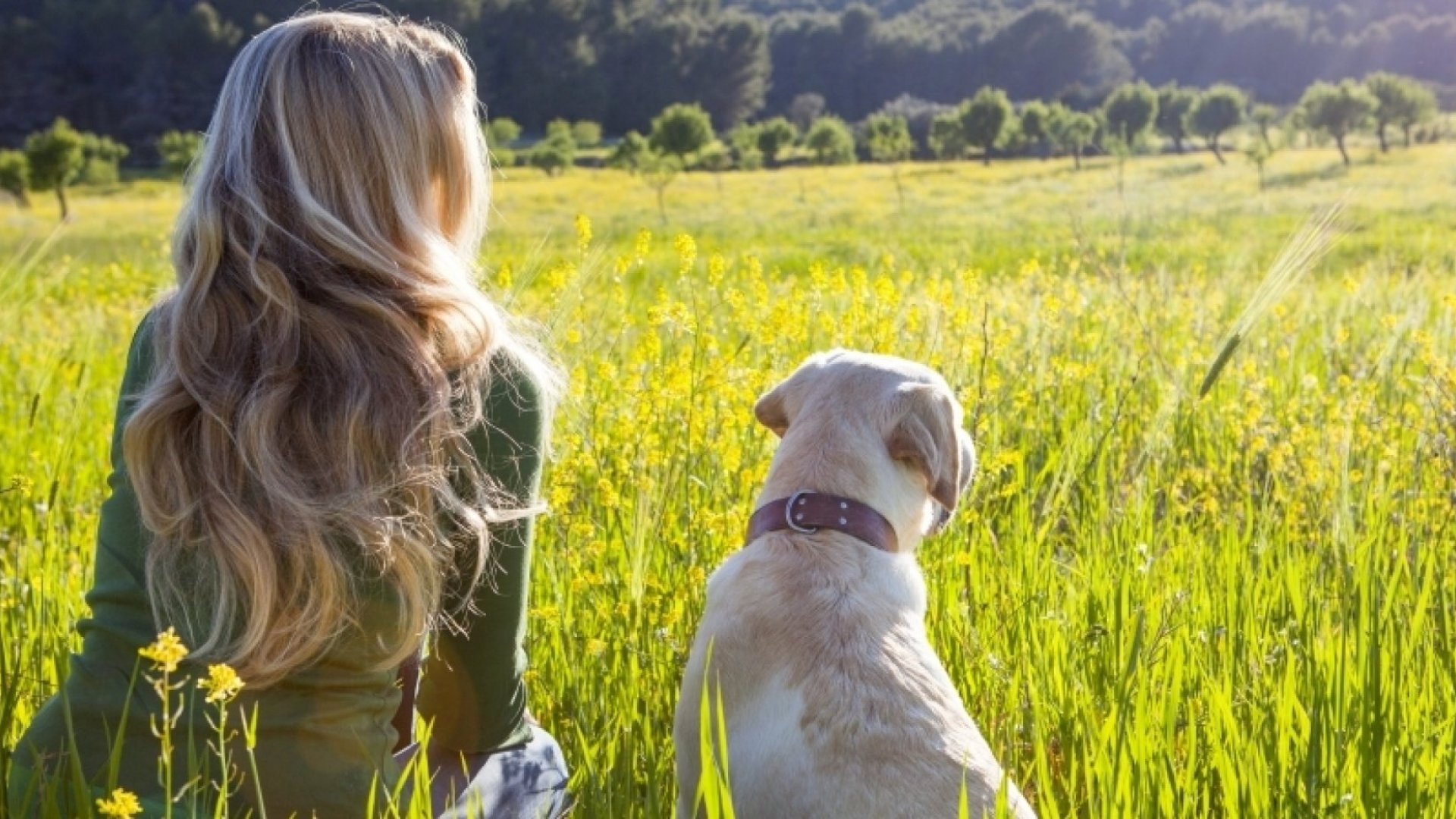 15 Surprising Things I Have Learned About Loyalty