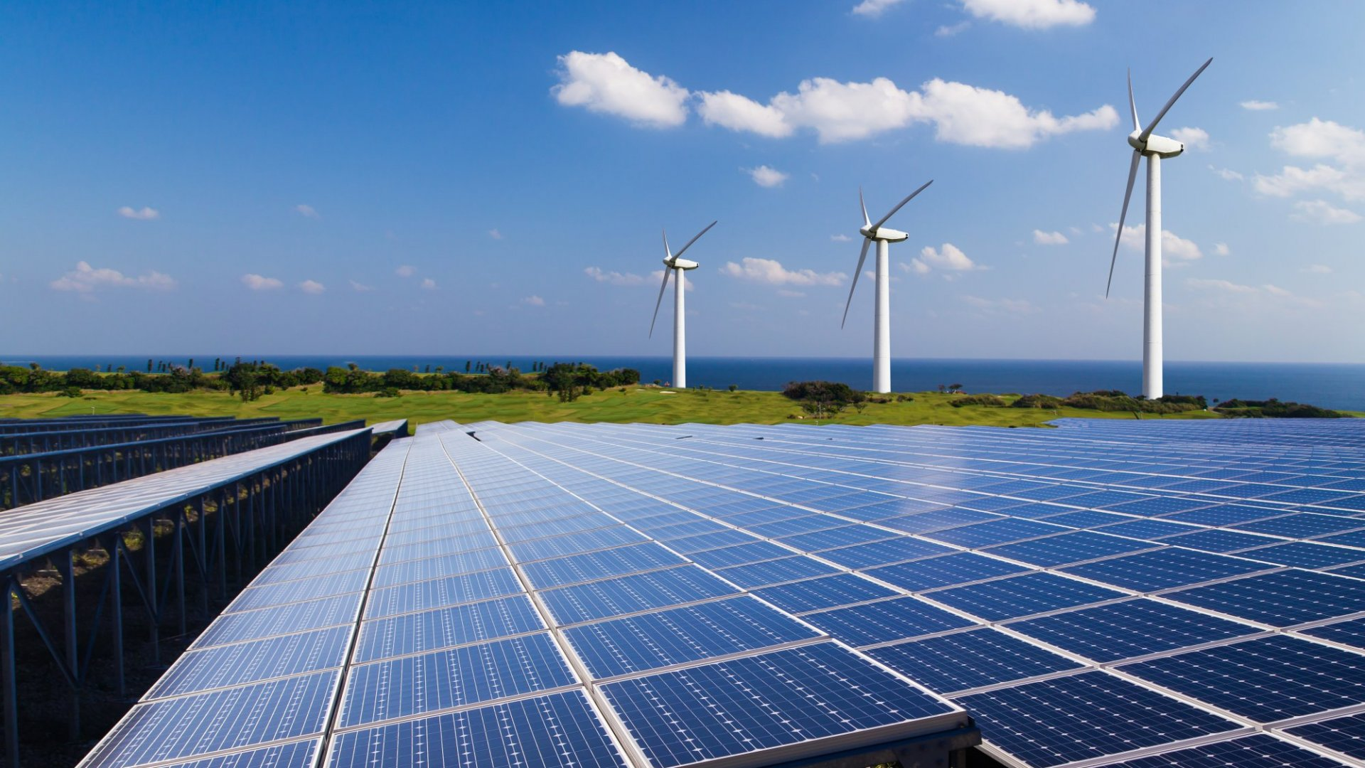Can Green Energy Put Your Company in the Black?