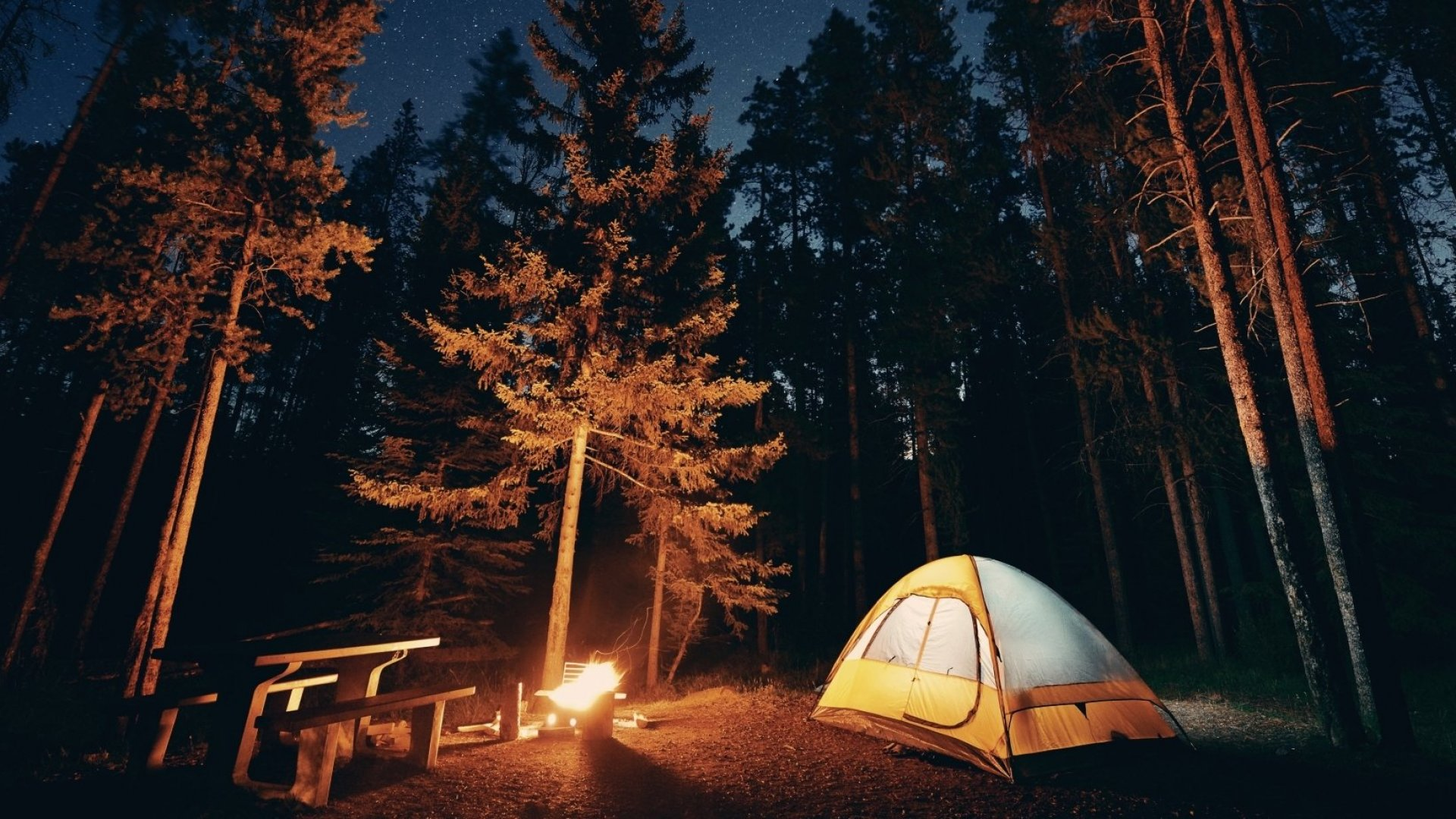 Need a Reason To Go Camping? It Will Make You a Better Entrepreneur