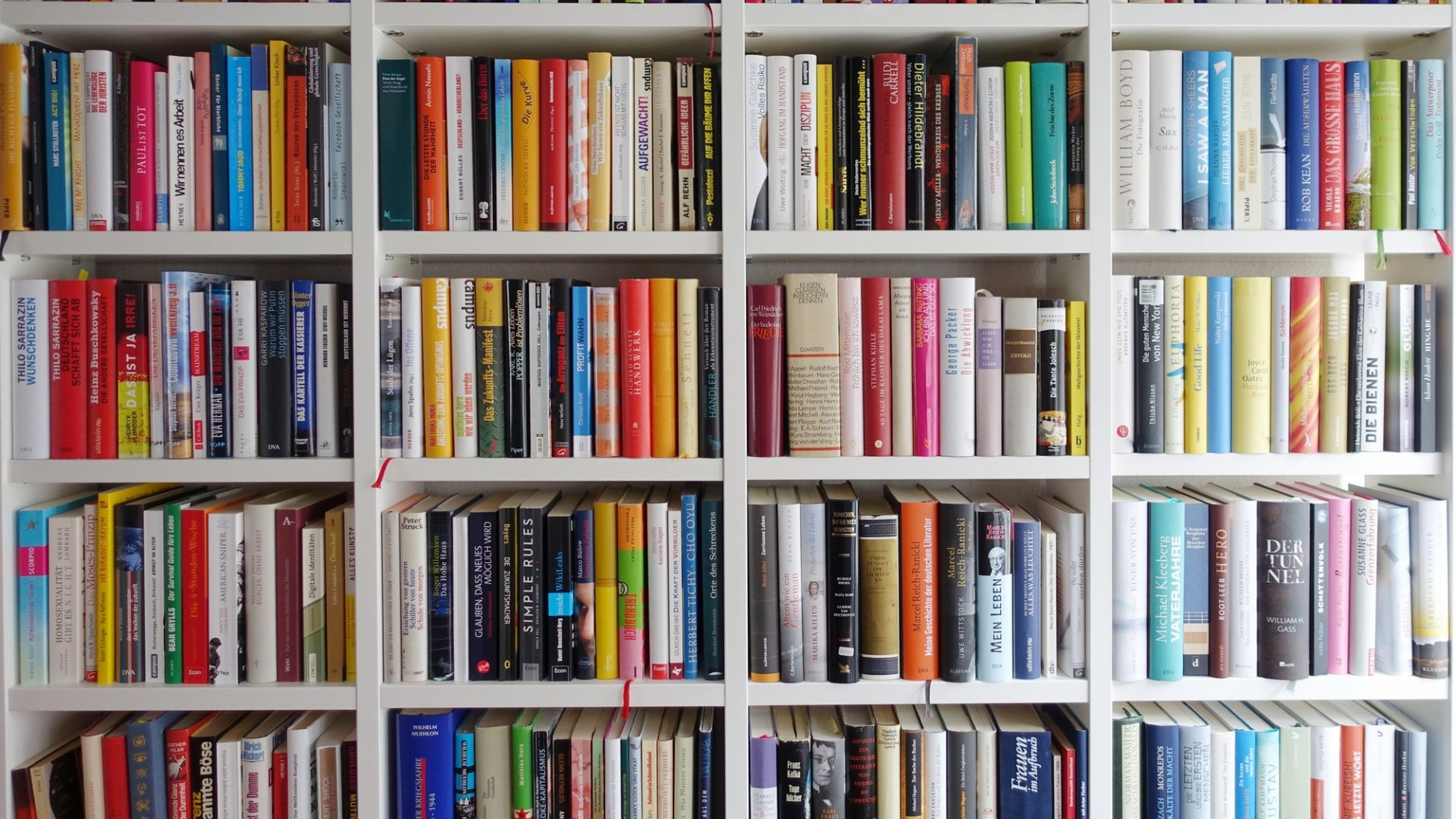 Why Reading Books Should Be Your Priority, According to Science