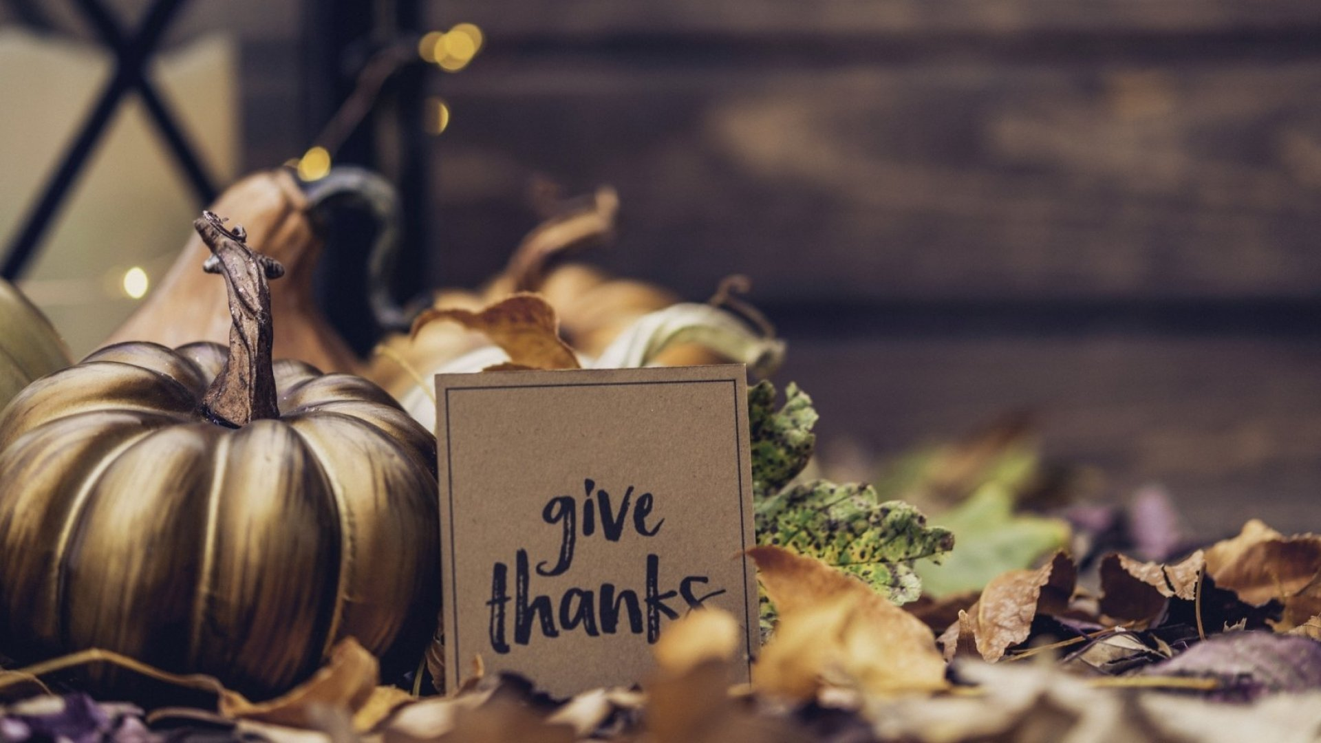 6 Reasons to Appreciate Entrepreneurship This Thanksgiving