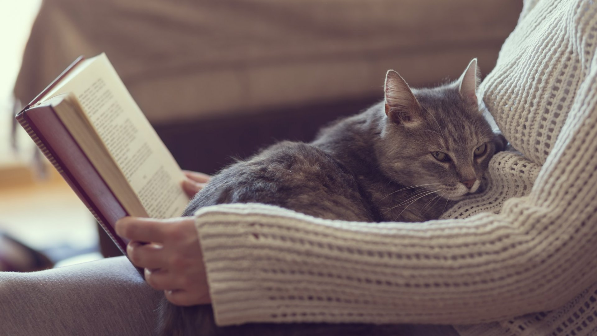 New Study: Reading Fiction Really Will Make You Nicer and More Empathetic