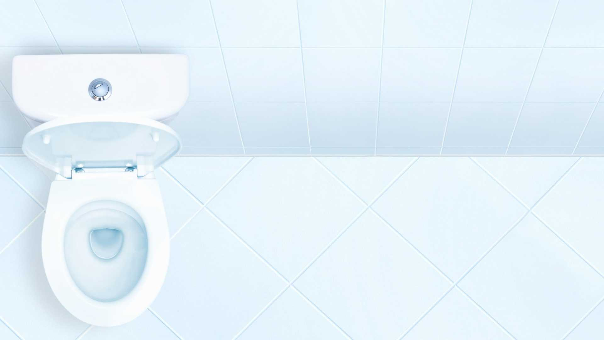 Can A Better Toilet Improve Your Company's Productivity?