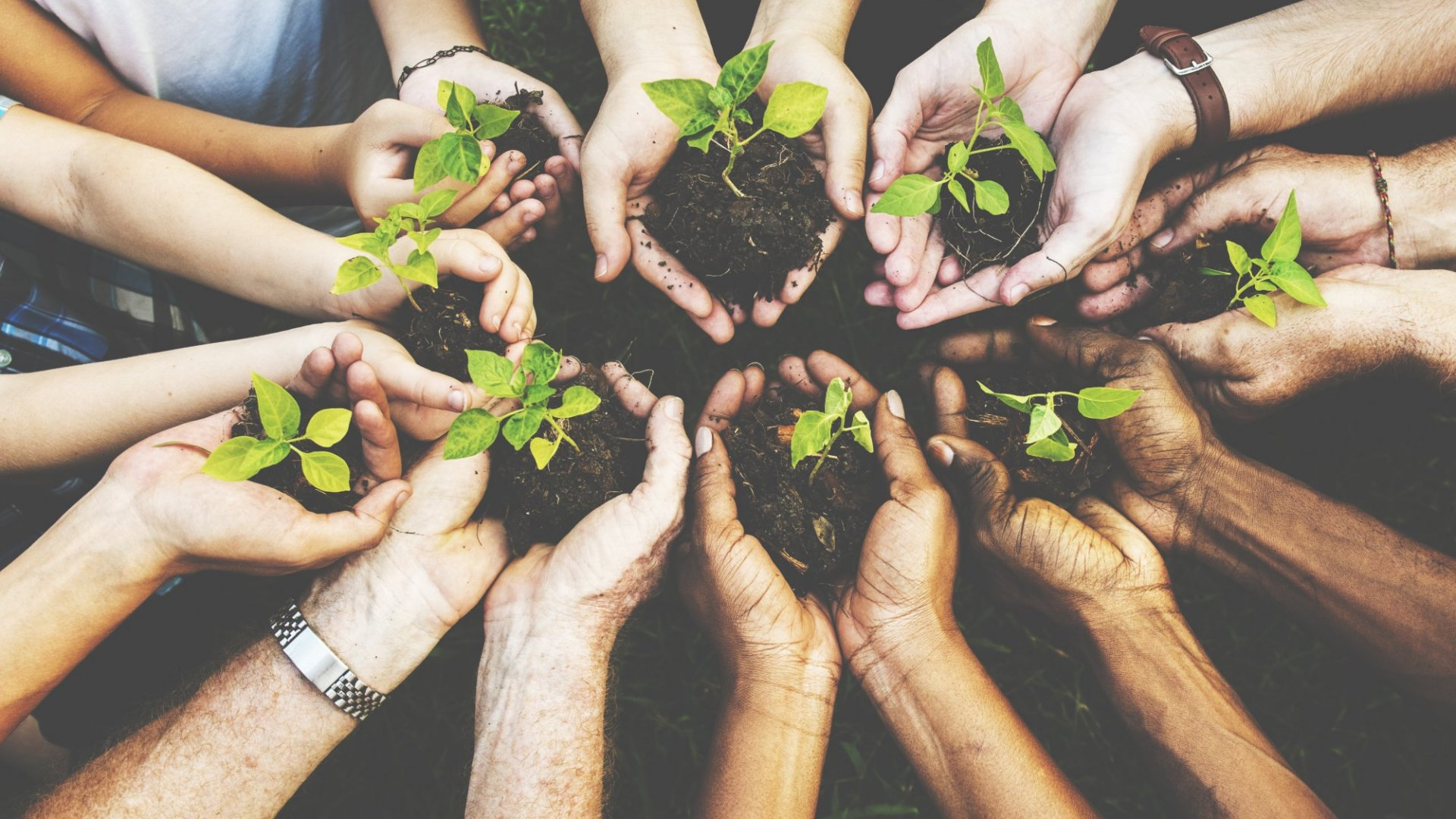 Why Social Responsibility Is Important for Your Business Image