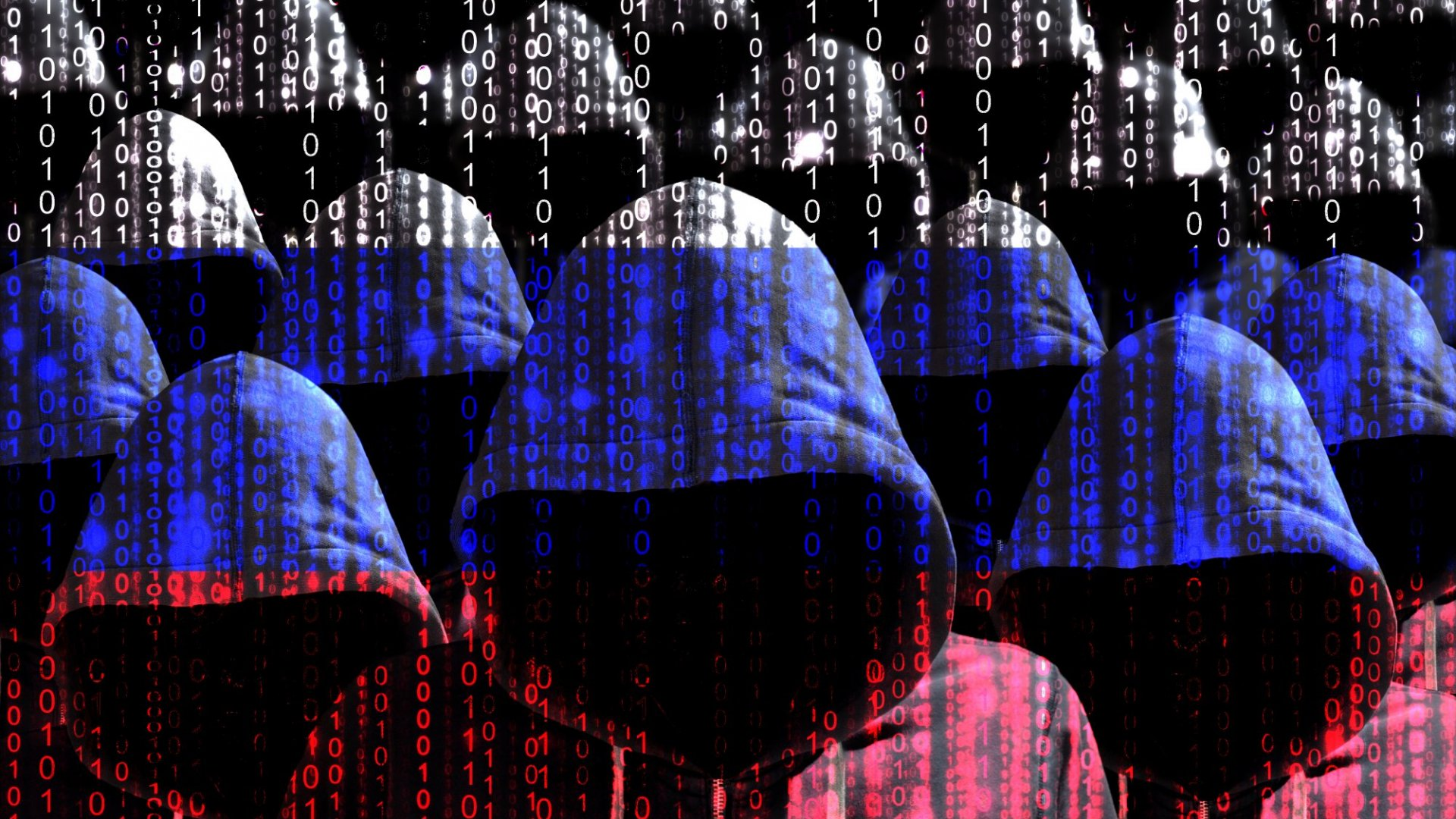 The White Hats in the War Against Election Meddling