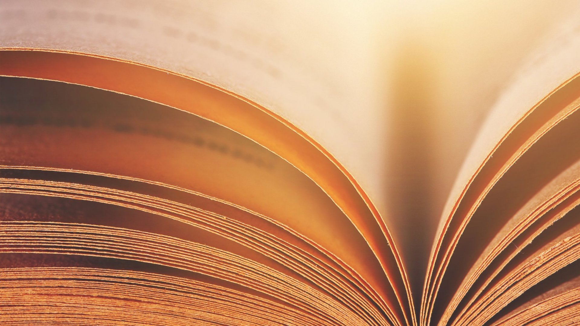 Read This List of Books (Suggested by Super Successful People) to Get Ahead in Business and Life