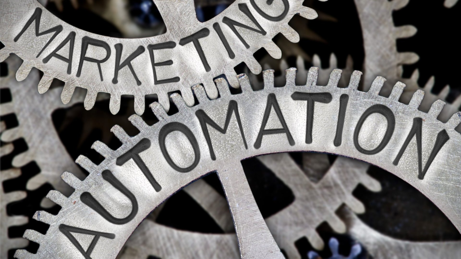 4 Automation Opportunities Growing Companies Can't Afford to Ignore