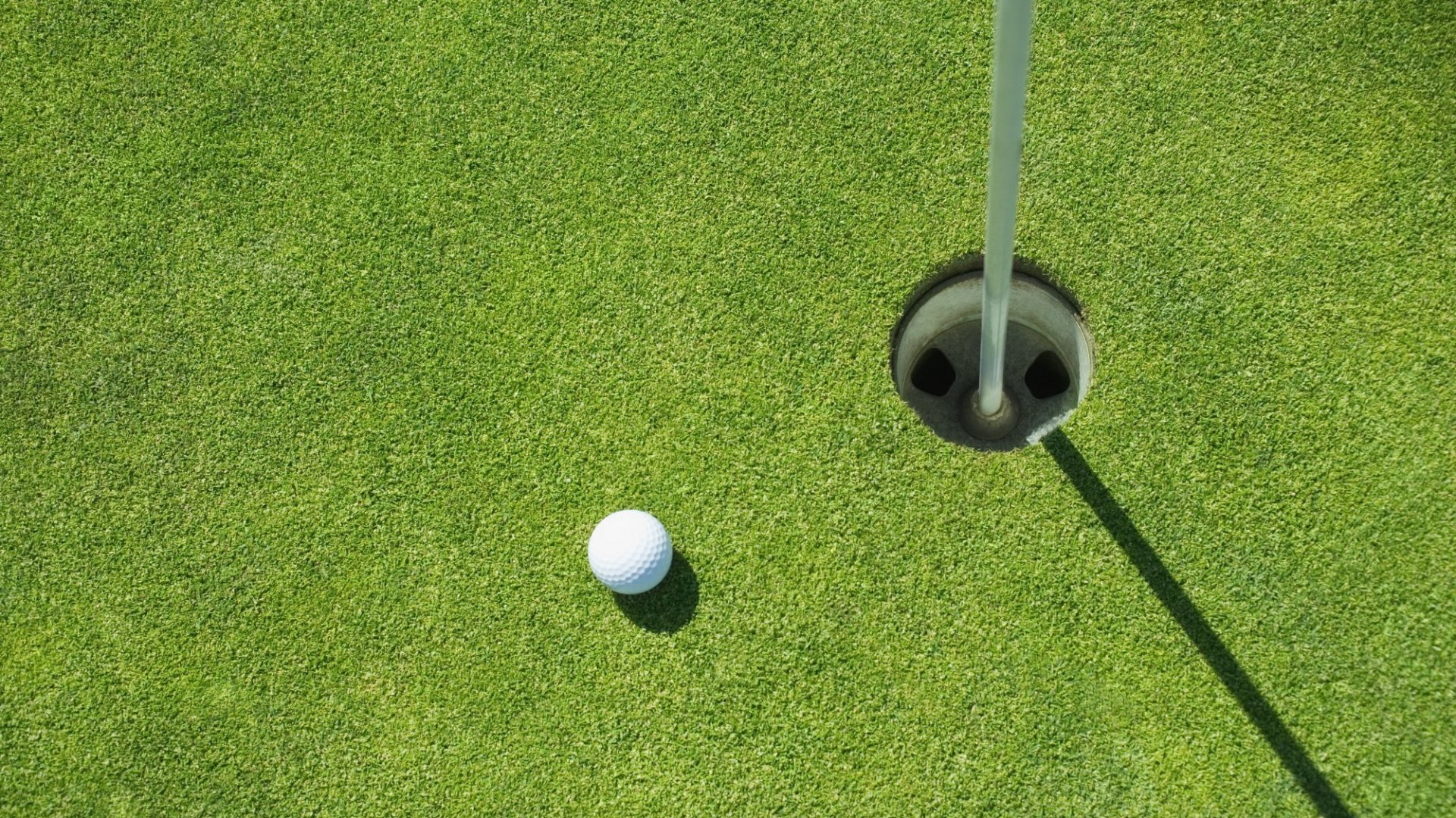 5 Businesses Saving the Golf Industry From Extinction