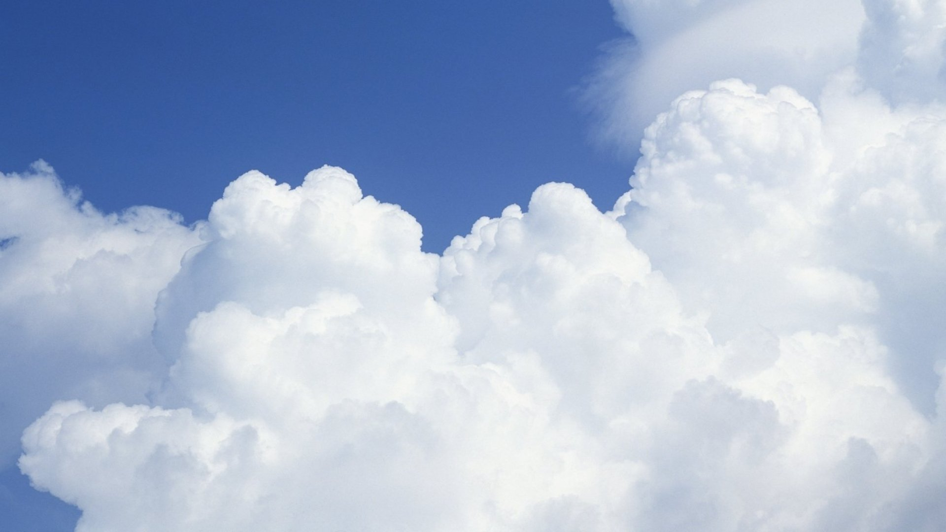 Public or Private Cloud? 5 Things to Consider