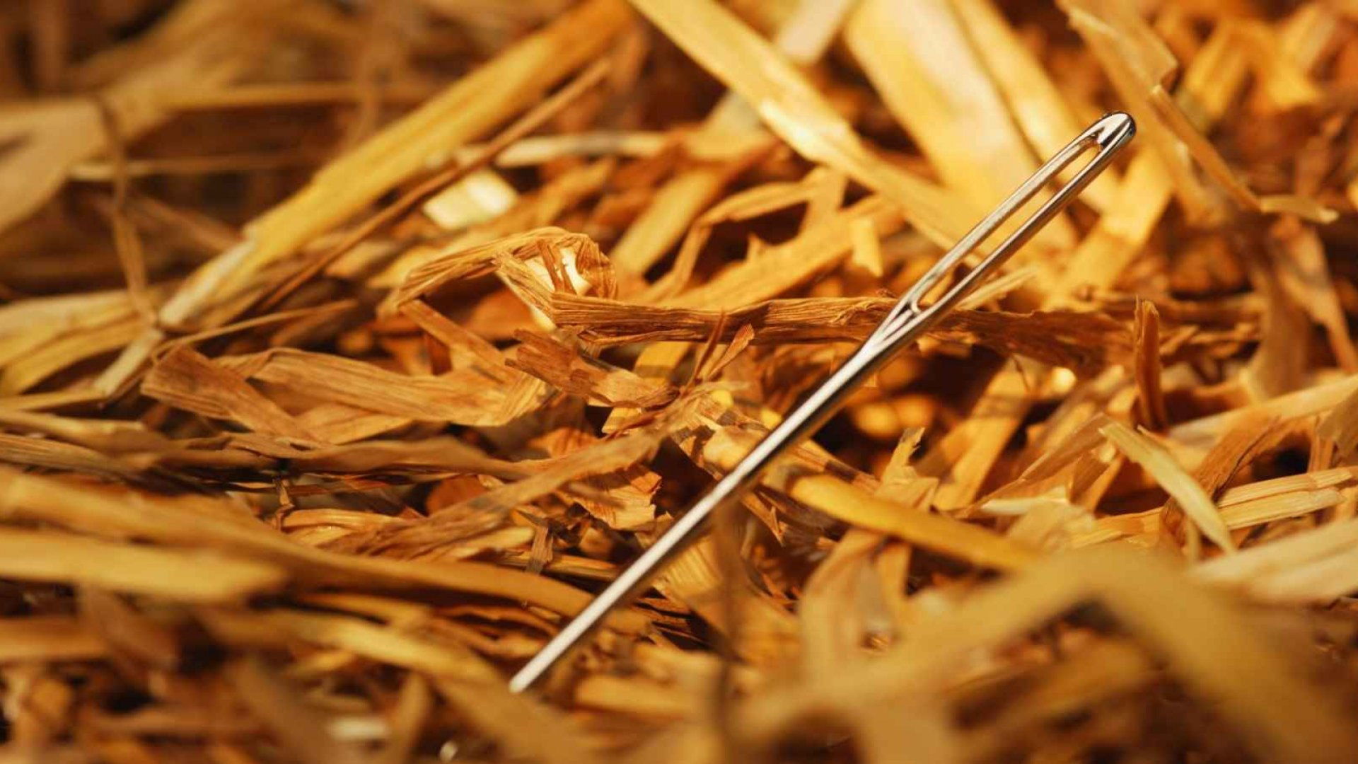 There are so many freelance job sites out there now that finding a gig shouldn't be like looking for a needle in a haystack.
