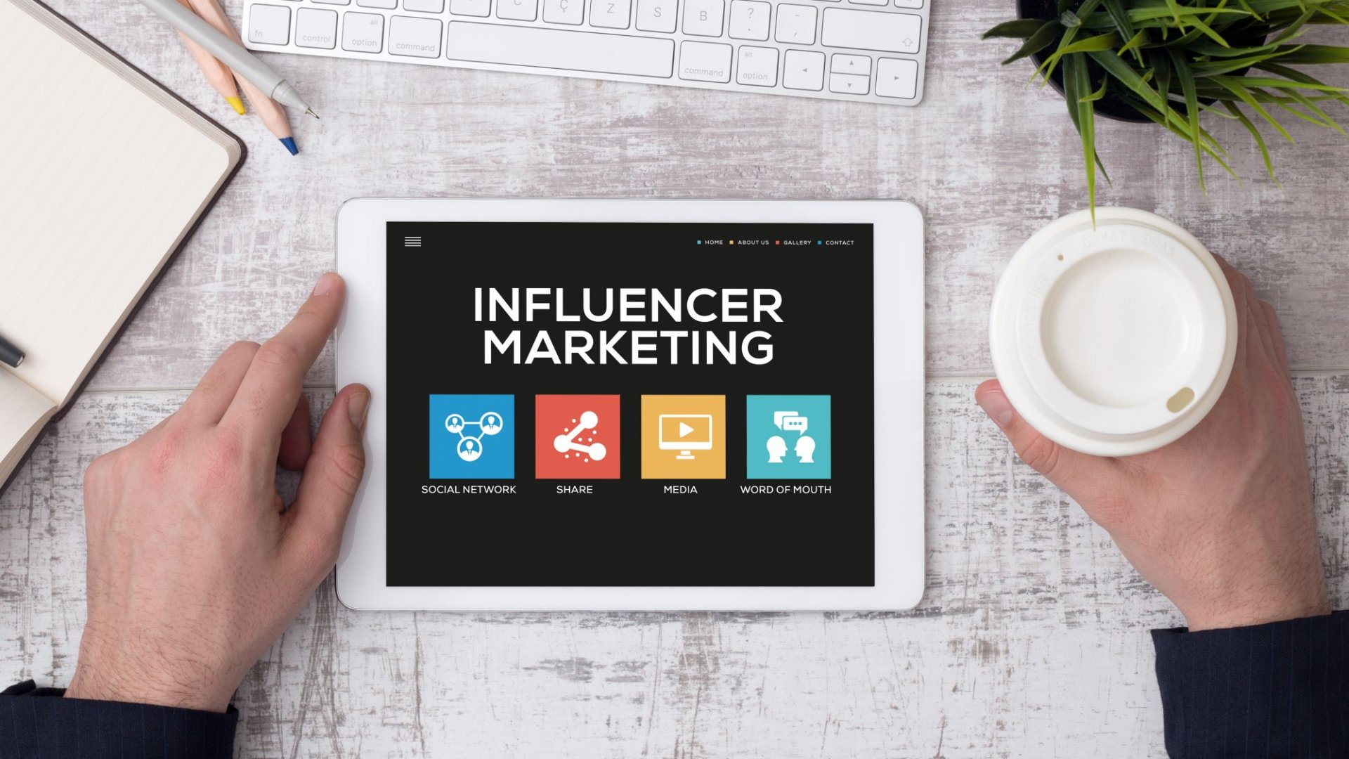 <b>For B2B brands to effectively position their product and engage their target audience through influencer marketing, it's essential to work with brand partners who hit high marks in the areas of authority, alignment, authenticity, and relevance. </b>