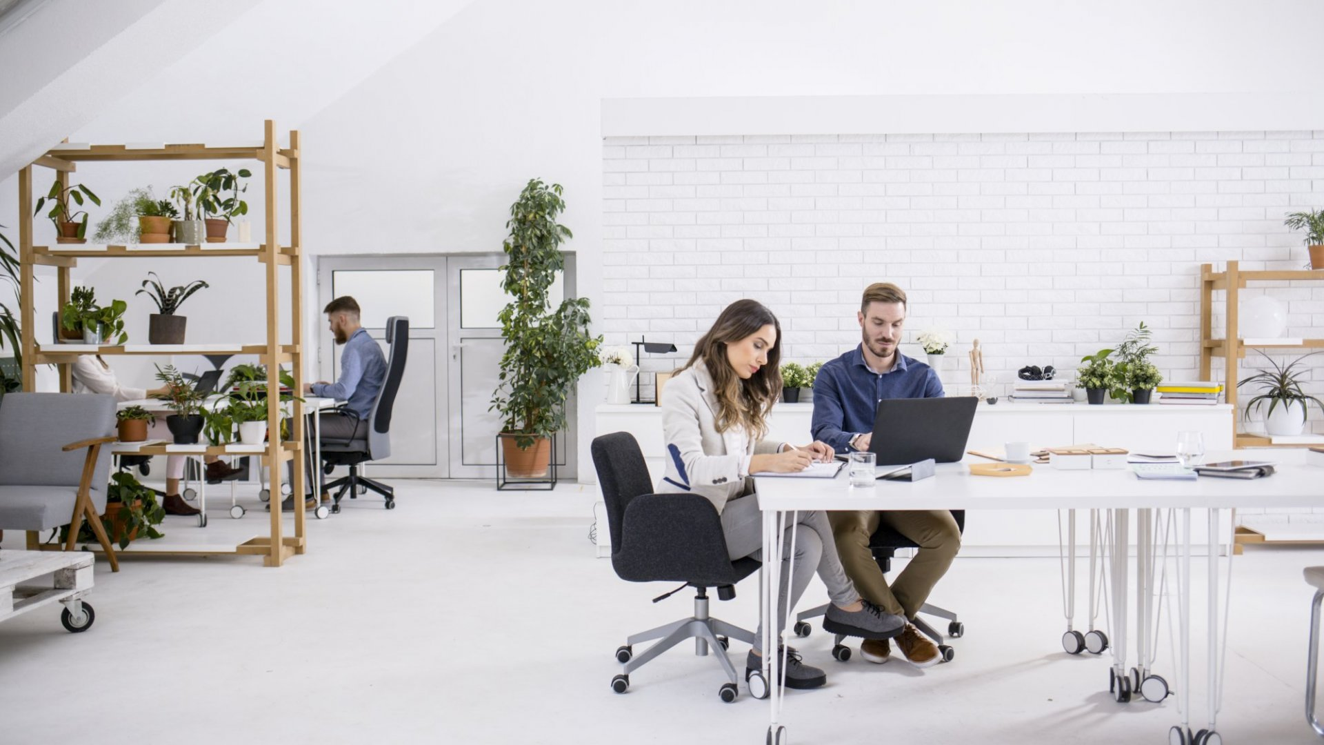 Stuck With An Open Office Plan? Here's How to Make It Less Awful