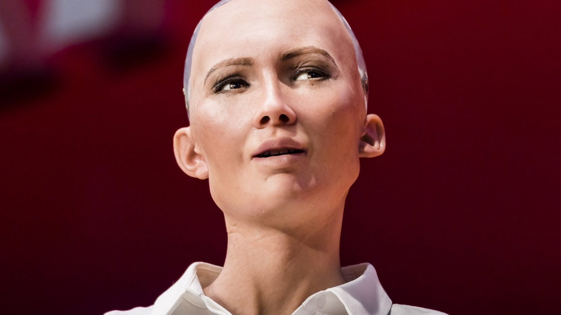 Sophia the Robot, robot of Hanson Robotics.