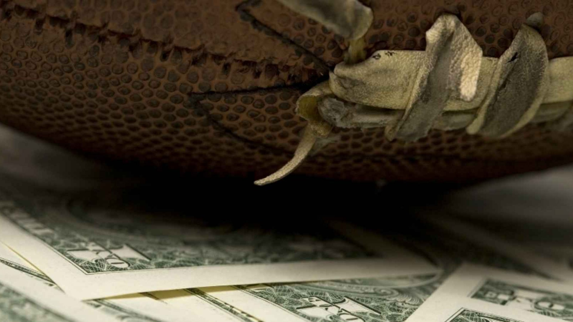 Sports Betting Mutual Funds Begin to Show Real Results for Investors