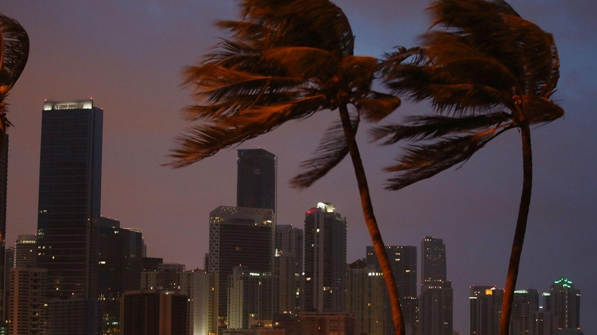 Florida Entrepreneurs, Seasoned in Storms, Say Irma Was Actually 'Best-Case Scenario'