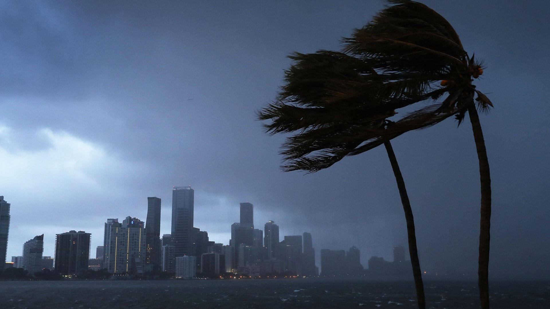 Digital Disaster Preparedness: 10 Apps to Download Before a Disaster Strikes