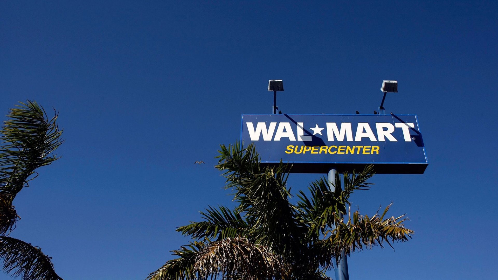 Walmart Launches 'Store No. 8,' a Startup Incubator in Silicon Valley