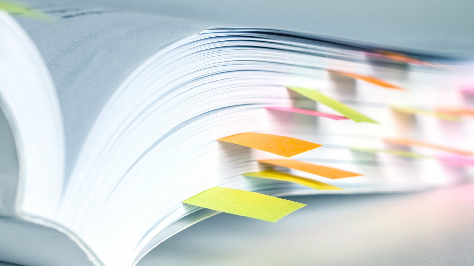 5 Essential Bits That Must Be Included in Every Employee Handbook