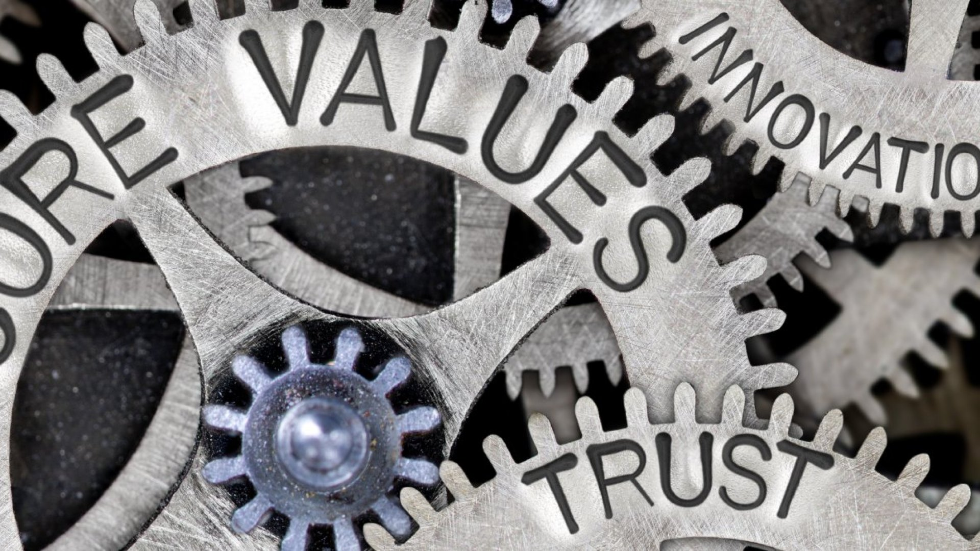 A Labor of Love: How to Craft Your Company's Core Values