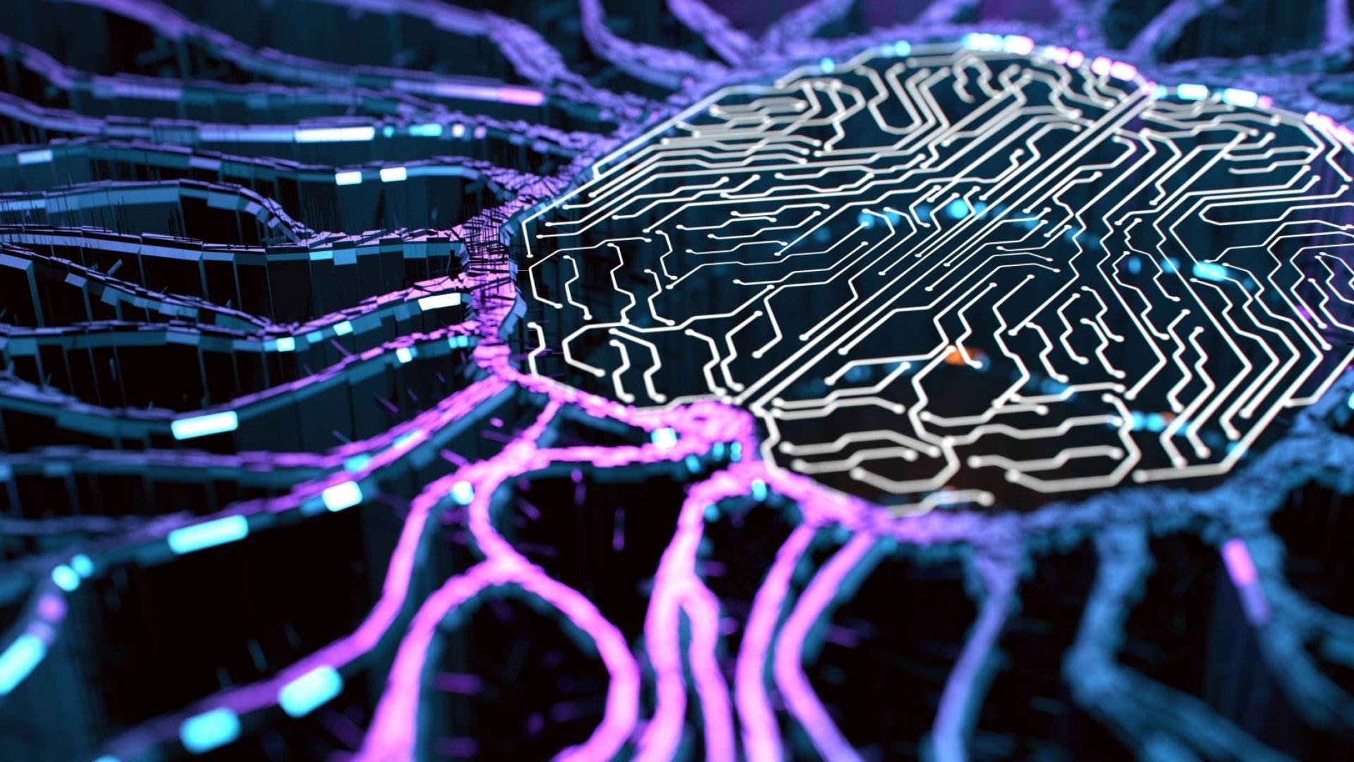 How to Use AI to Grow Your Business and Undercut Your Competition