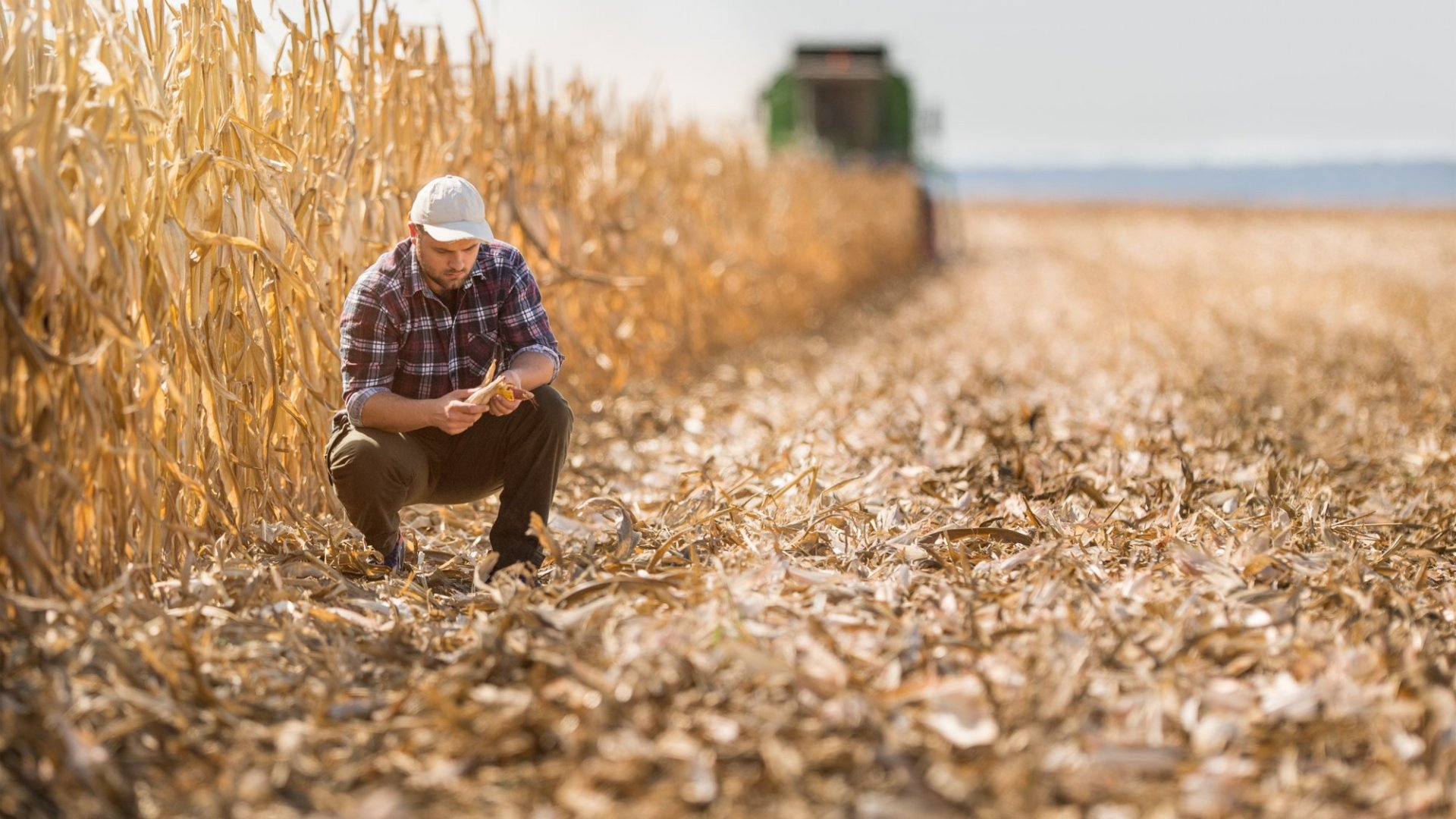 Agriculture Has a Sustainability Problem--and It Affects Your Business. Here's Why