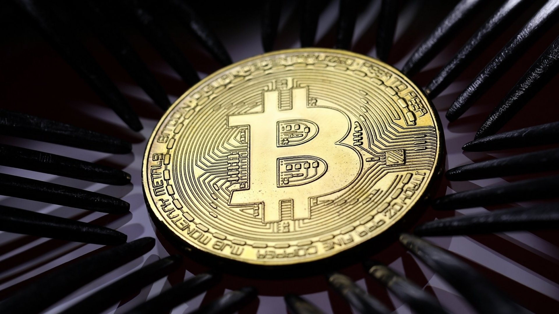 Yes, Bitcoin Crashed. But Another Big Cryptocurrency Is Pushing Record Highs Again