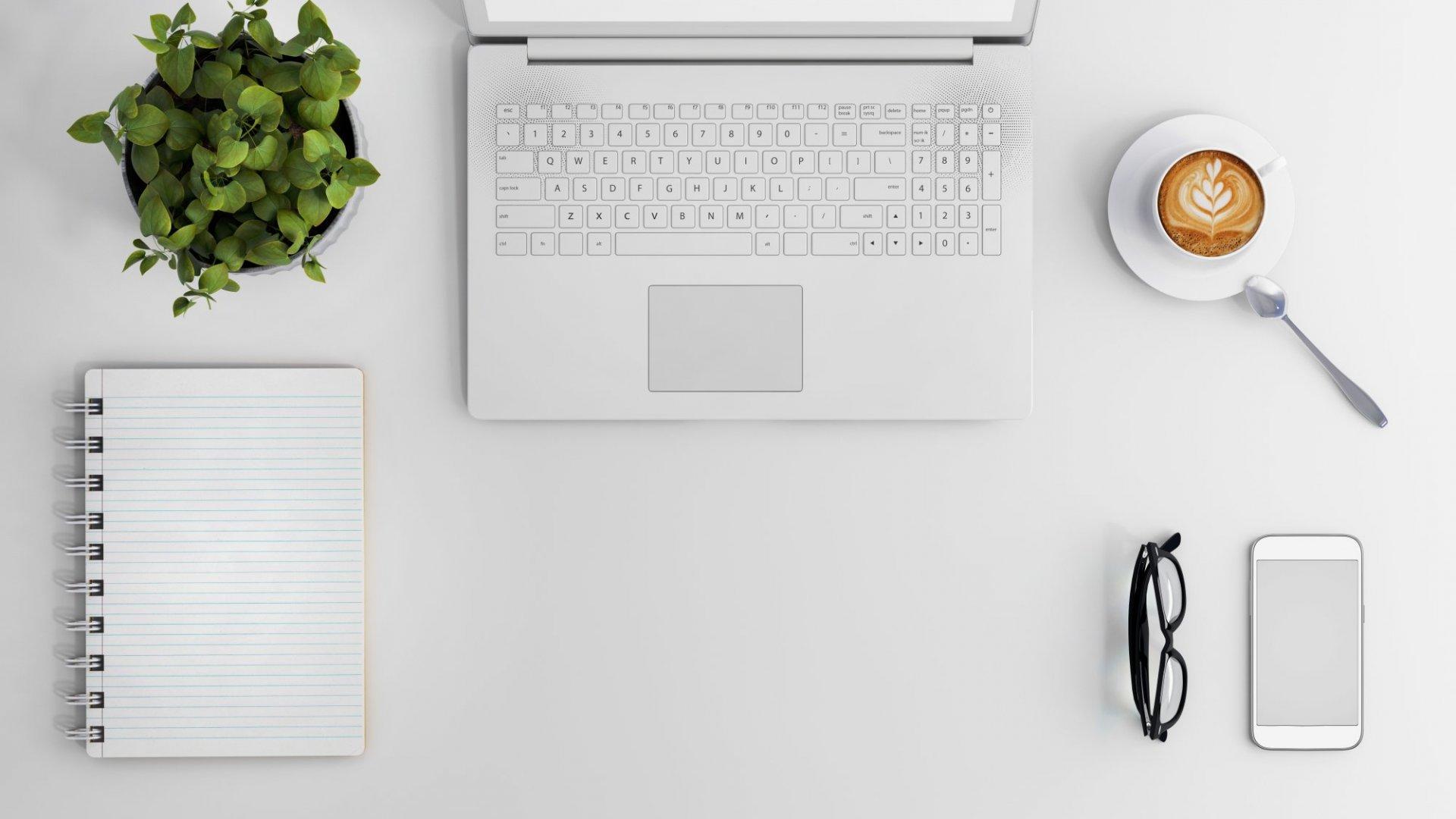 Study: Plants Reduce Office Stress