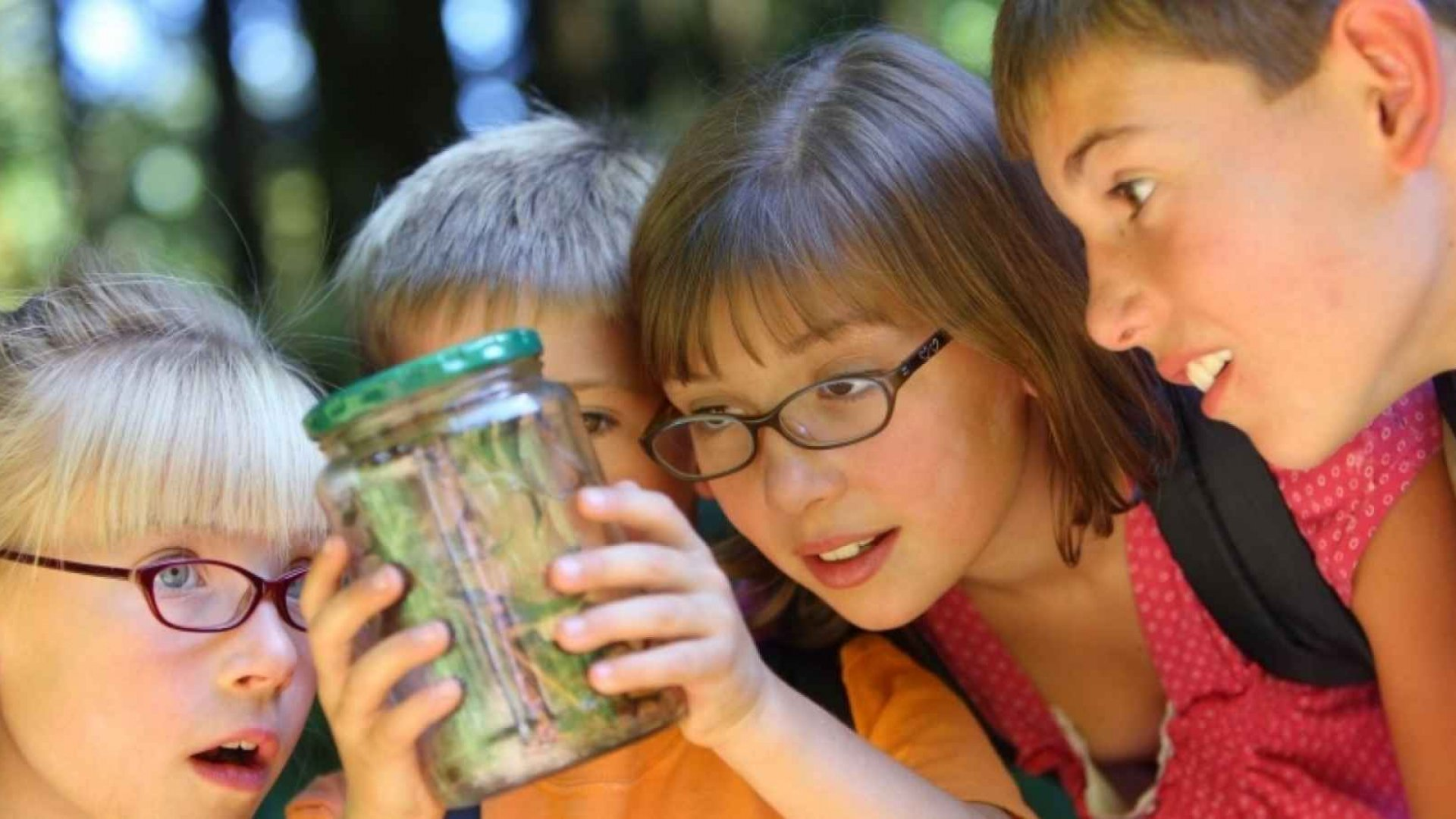 Summer Camp Can Give You a Tax Credit if You Know These 6 Things