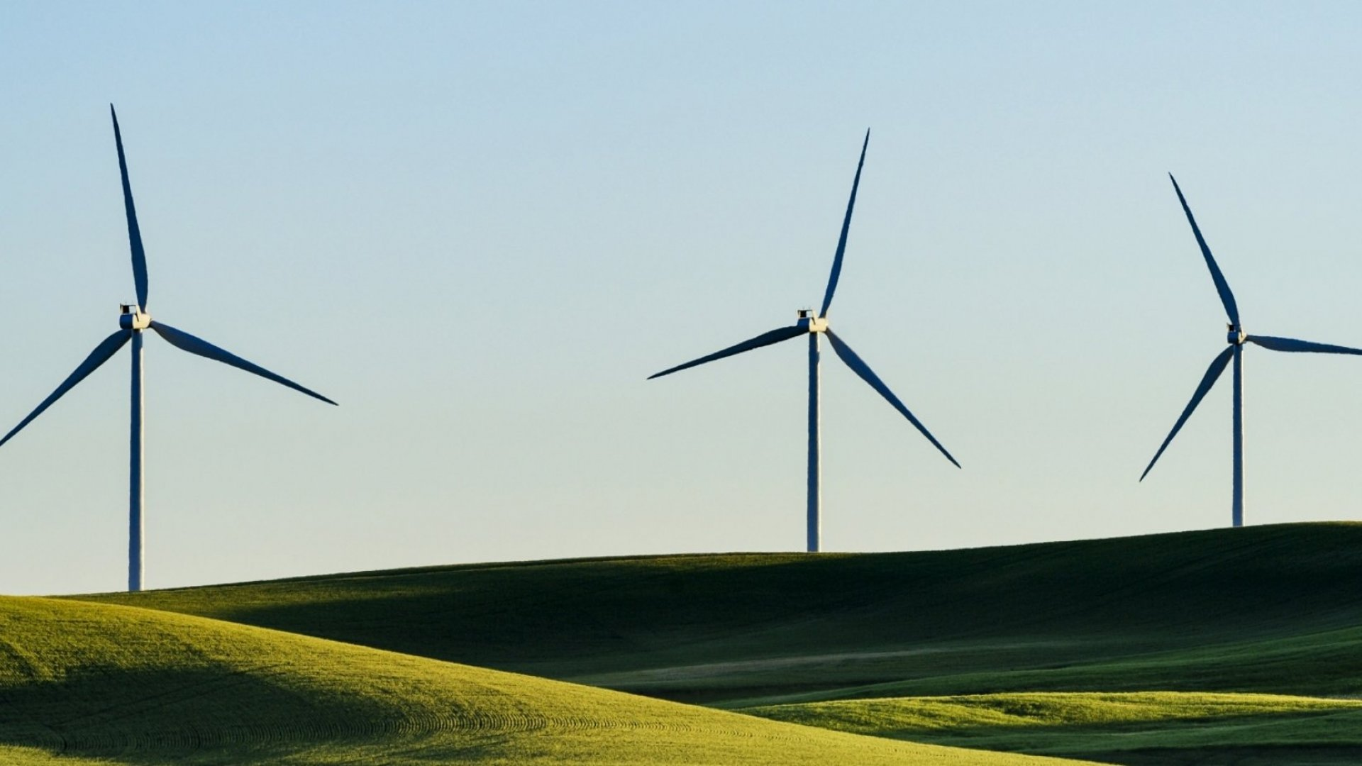 How Clean Energy and Profitability Go Hand-in-Hand