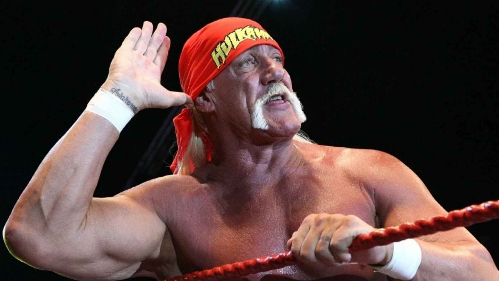 Hulk Hogan Sex Tape Trial: What You Say in a Chat Room Can Be Used Against You