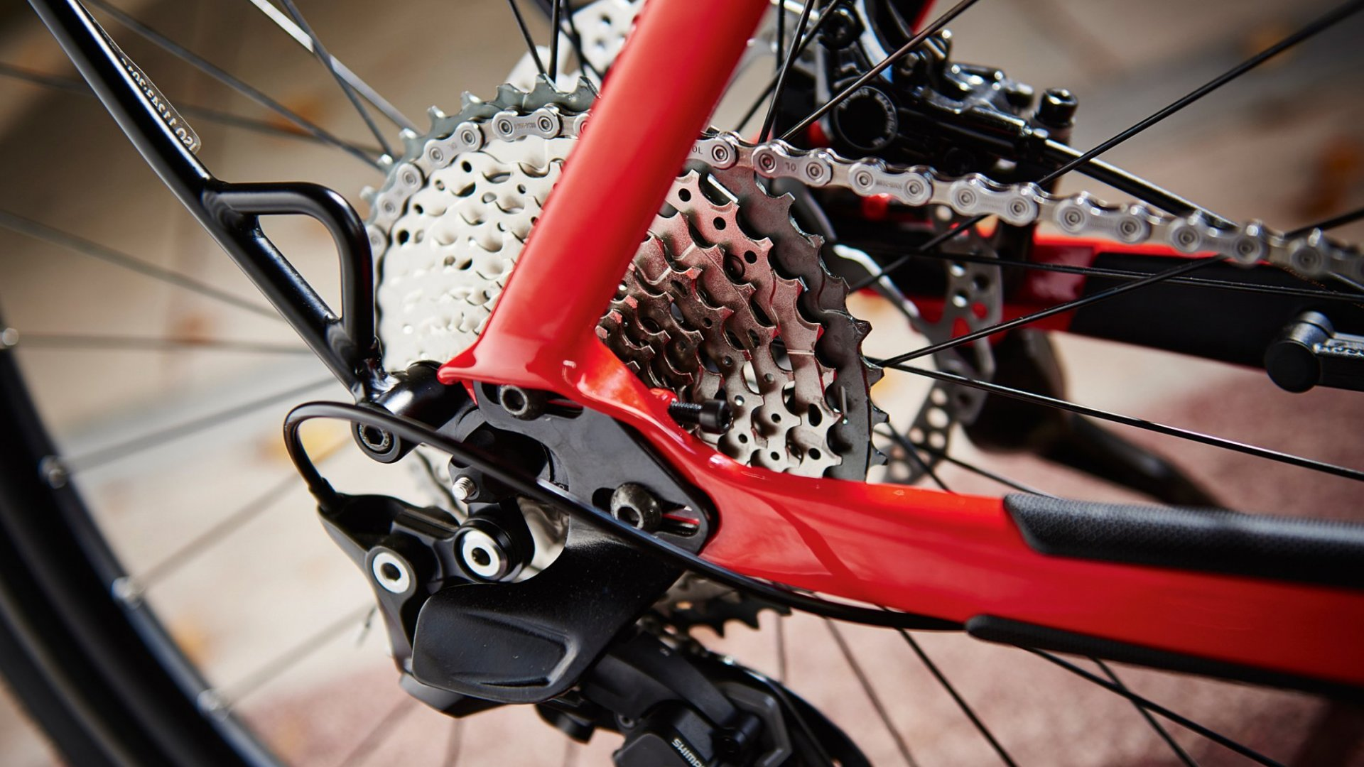 From Near-Failure to $1 Billion Empire: Trek Bicycles