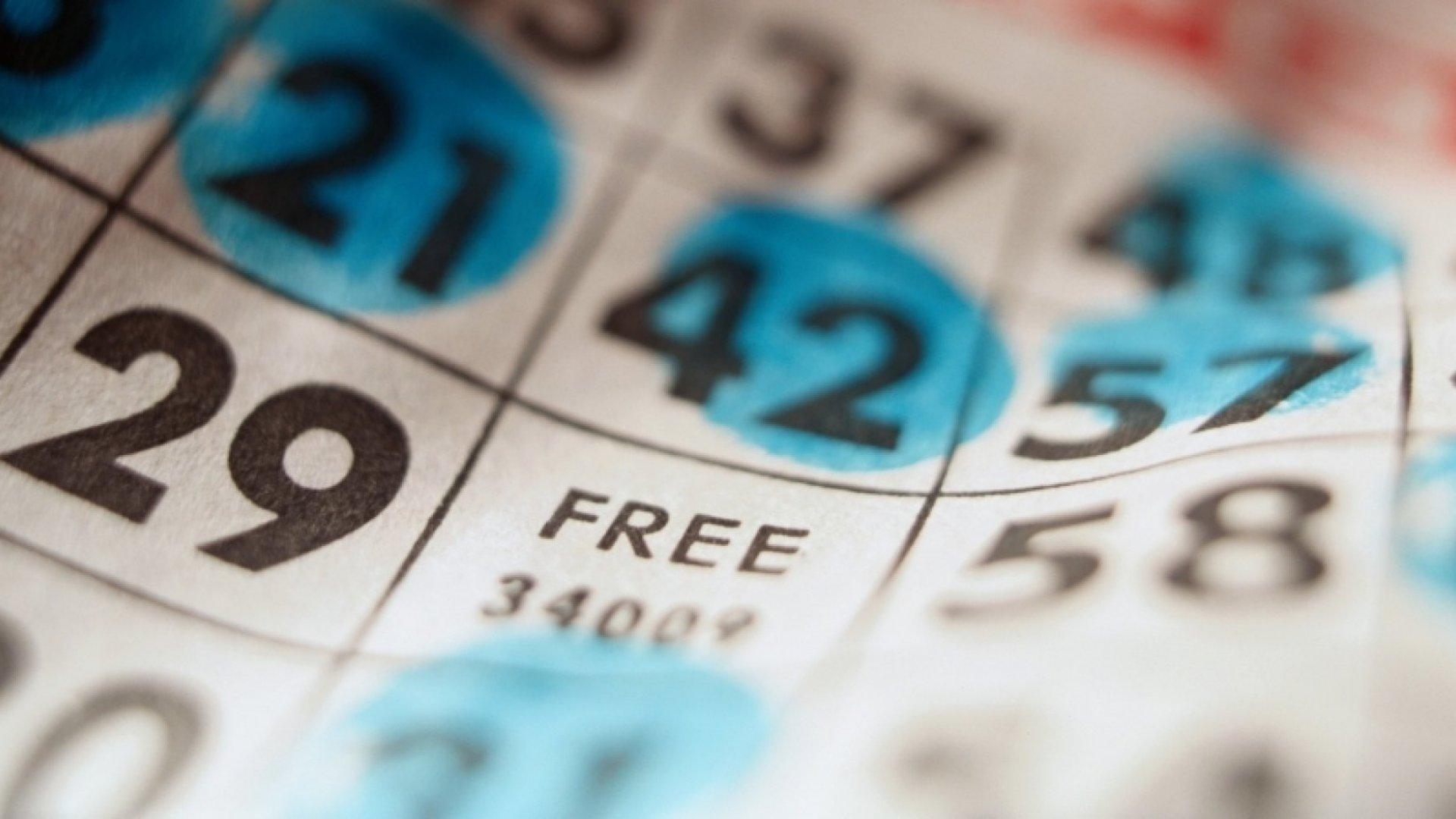 How This Company Is Innovating The Game Of Bingo