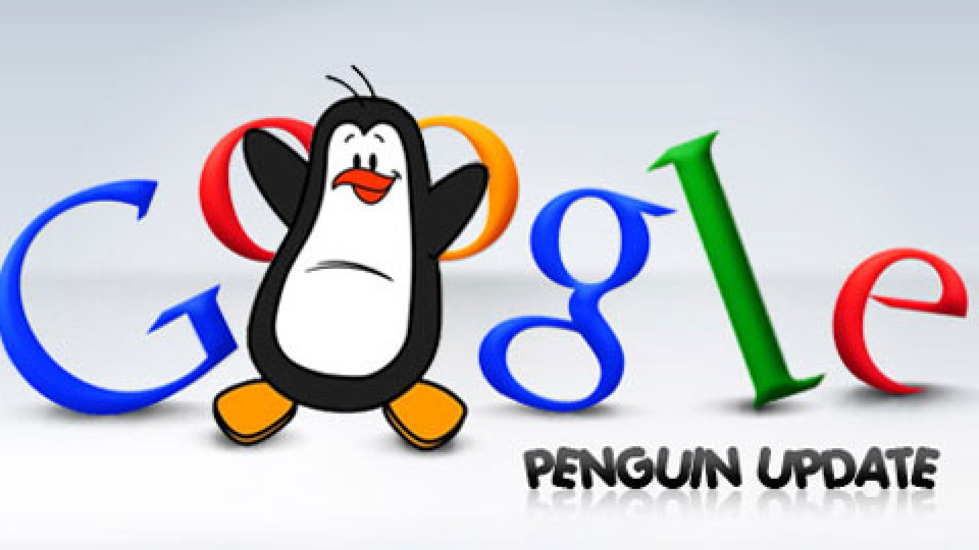 Google's Penguin 2.0 Update: What You Need to Know
