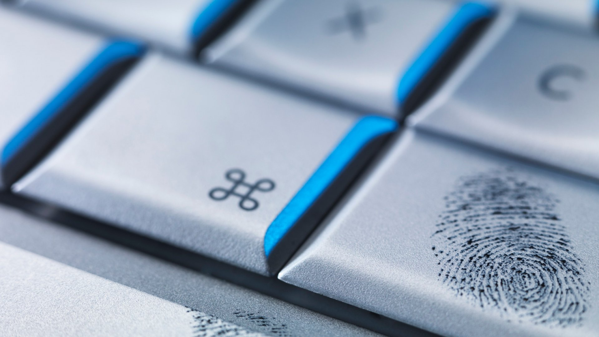 How Vulnerable Are You to Identity Theft?