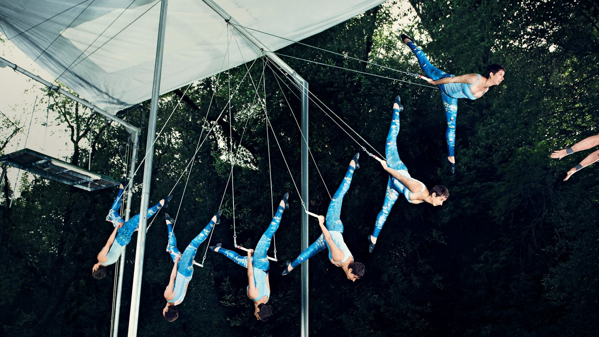 To Calm Her Nerves, This Founder Takes to the Trapeze