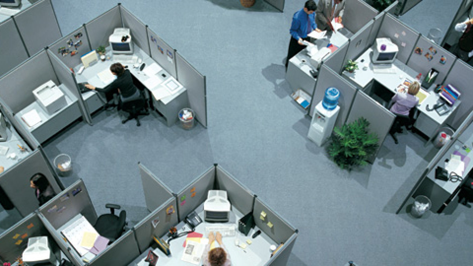 Do Your Offices Sabotage Your Culture?