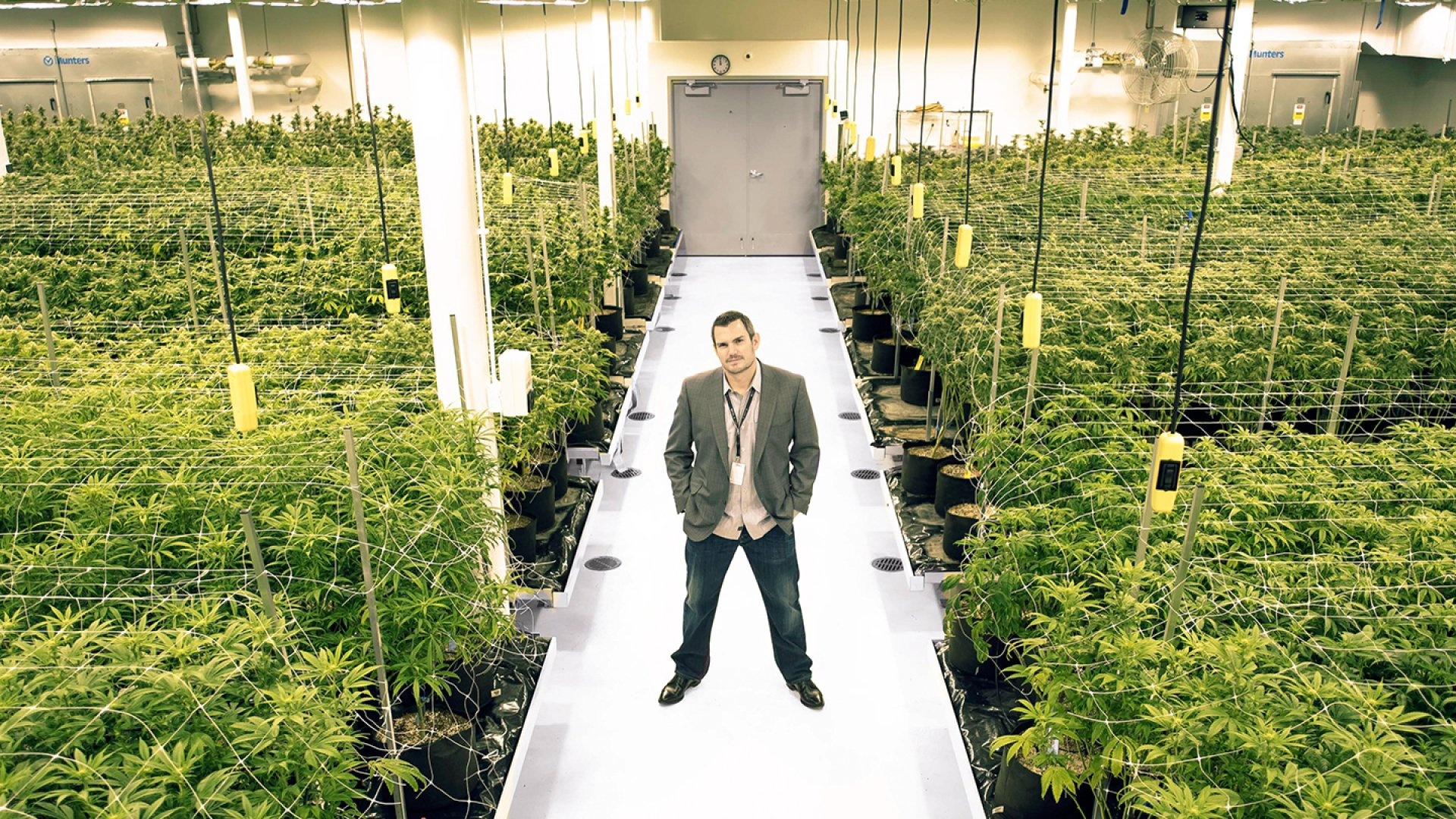 Joshua Ginsberg is a co-founder of Native Roots, one of the largest chains of marijuana retail shops in Denver. Ginsberg and his partners Peter Knobel and Rhett Jordan own 59 active licenses, more than anyone else in the industry.