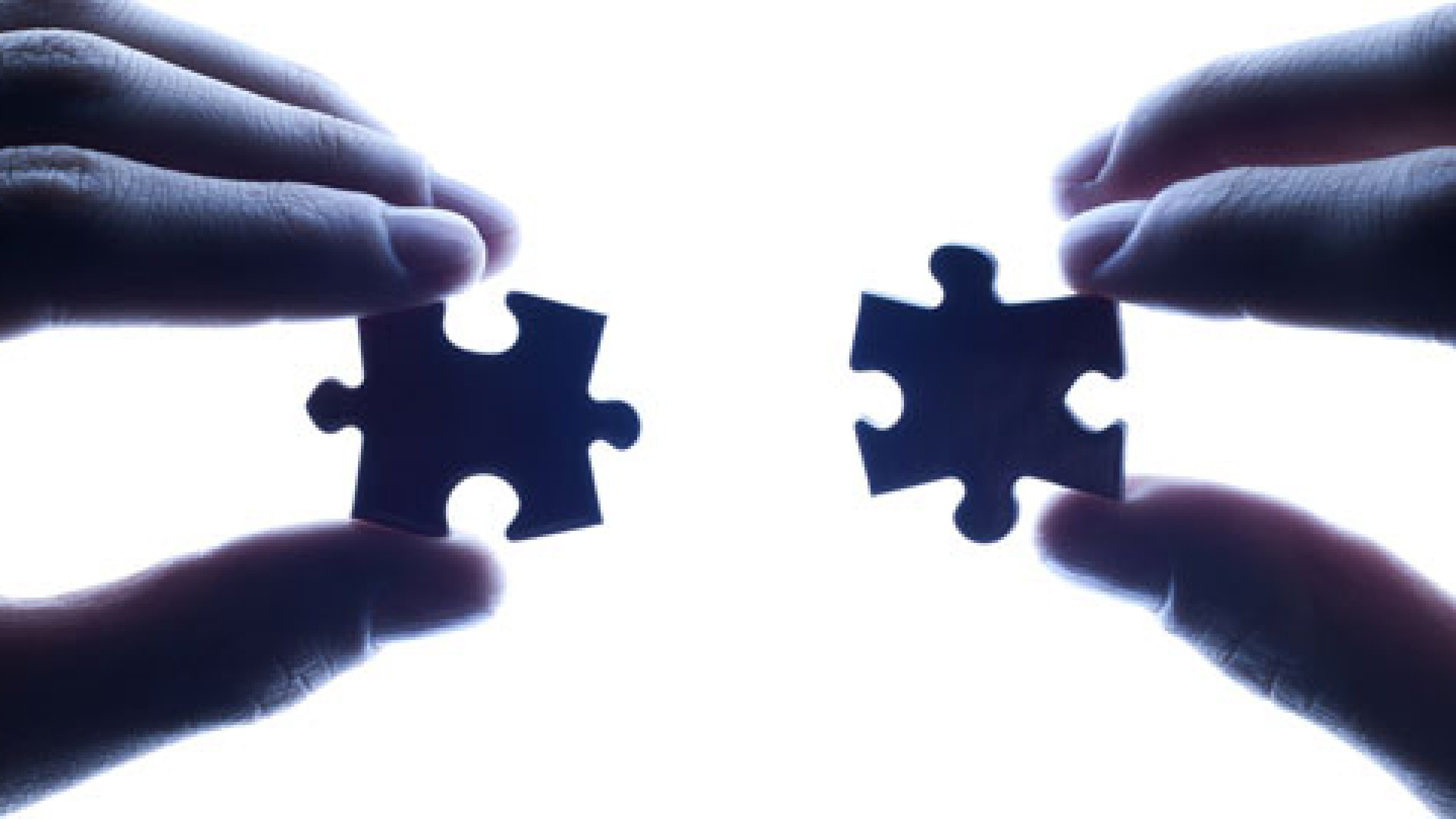 Vet a Potential Partner: 10 Questions