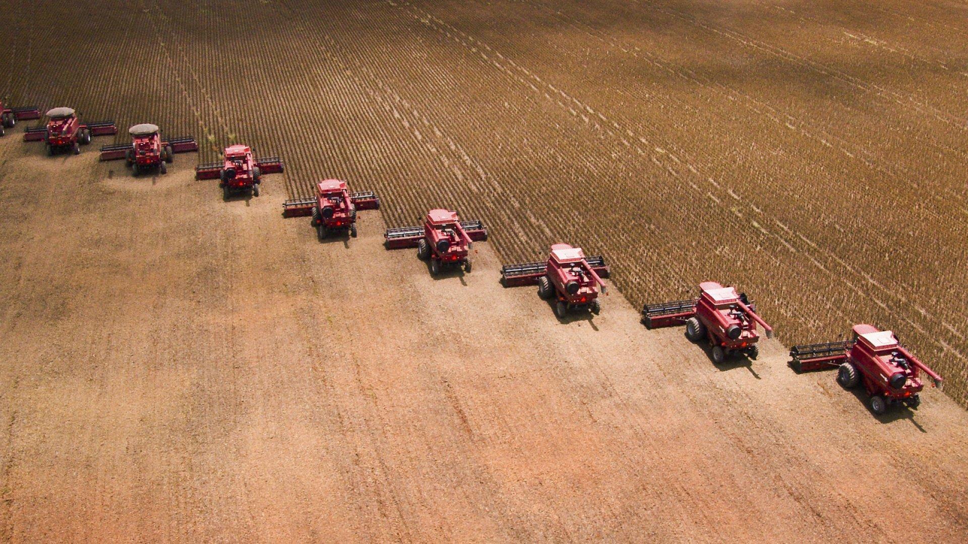Incubator Farms Help Entrepreneurs Grow