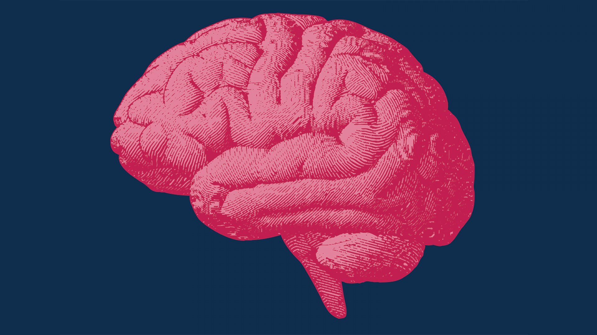 The Research-Backed, 3-Step Method to Hack Your Brain, Break Bad Habits, and Make Better Decisions